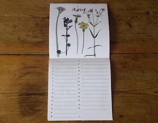 Birthday Calendar or Special Events Calendar by Alice Draws The Line April