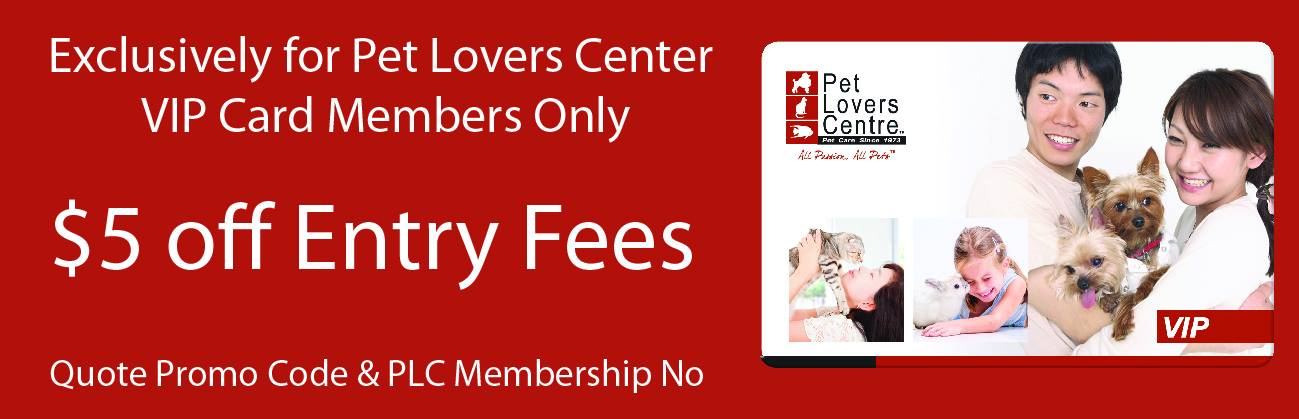 analysis of pet lovers centre Essays - largest database of quality sample essays and research papers on pet lovers centre swot analysis.