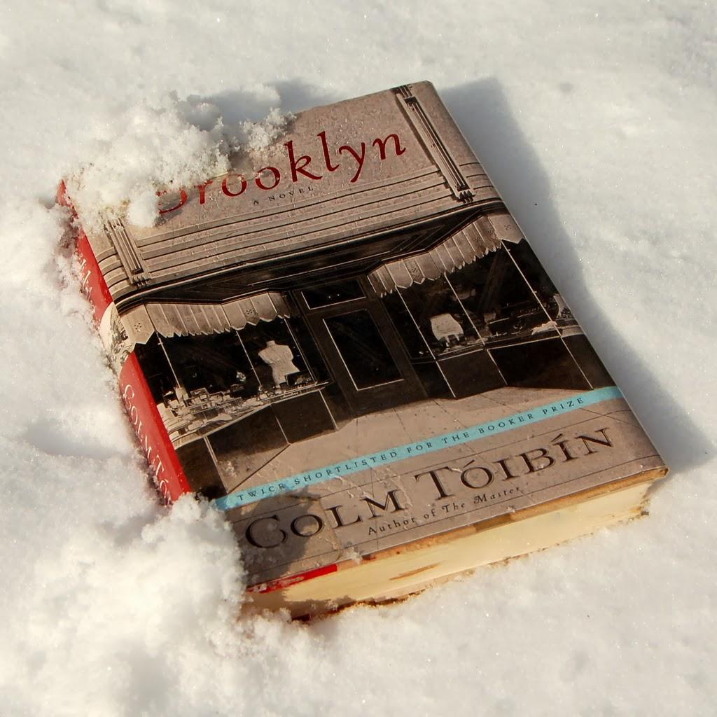 Study Guide - Freshman Text: Brooklyn by Colm Tóibín ...