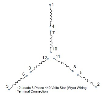 12 Leads Terminal Wiring Guide for Dual Voltage Star (Wye) Connected AC Induction Motor