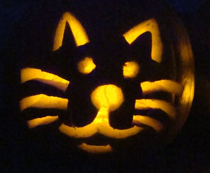 Costume crafty how to carve a cat face in a pumpkin for for Cat carved into pumpkin