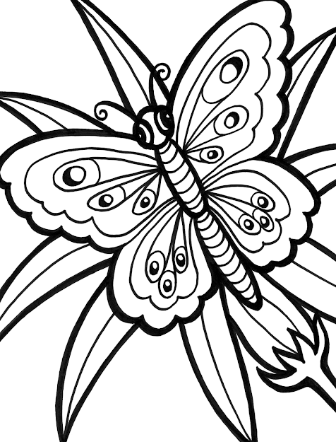 Printable Butterfly Coloring Pages