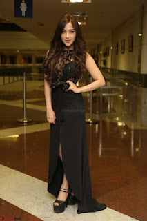Angela Krislinzki in Transparent Black Gown at Rogue Movie Teaser Launch 1st March 2017 033.JPG