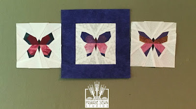 The Splendid Sampler Butterflies