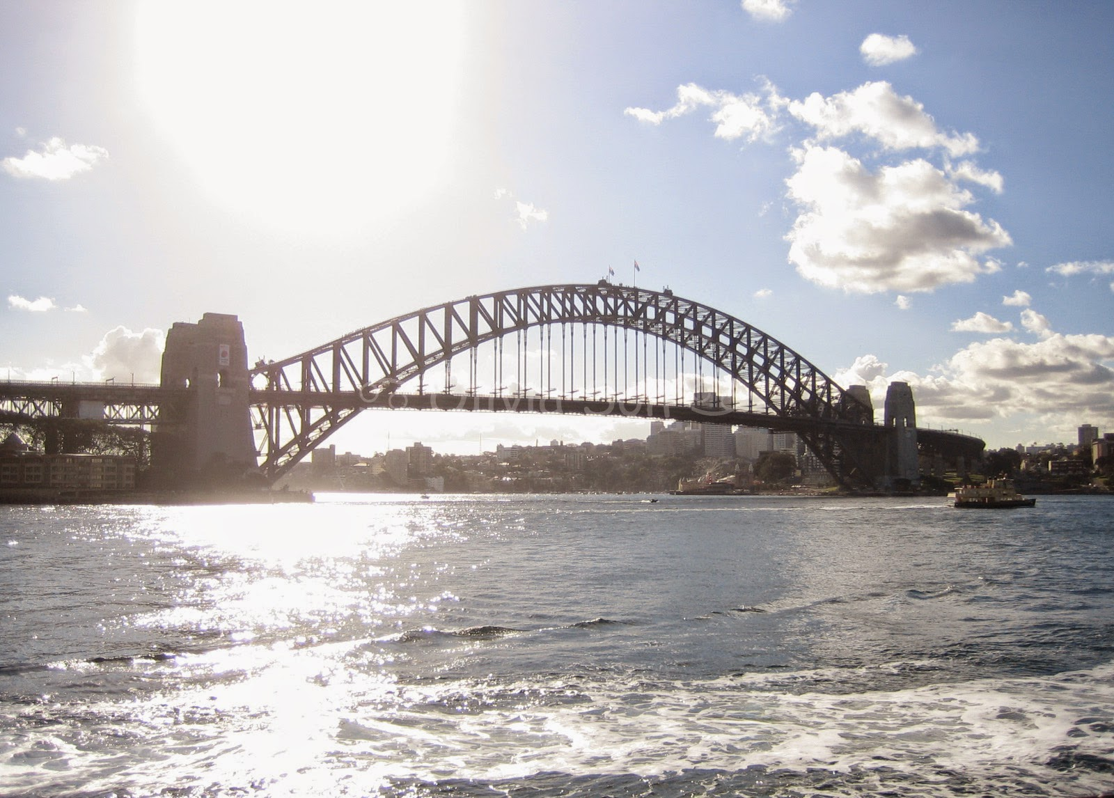 Sydney Harbour Bridge, Royal Botanic Gardens, Sydney, Australie