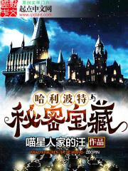 Harry Potter Cùng Bí Mật Bảo Tàng
