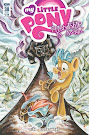 MLP Friendship is Magic #38 Comic Cover Subscription Variant