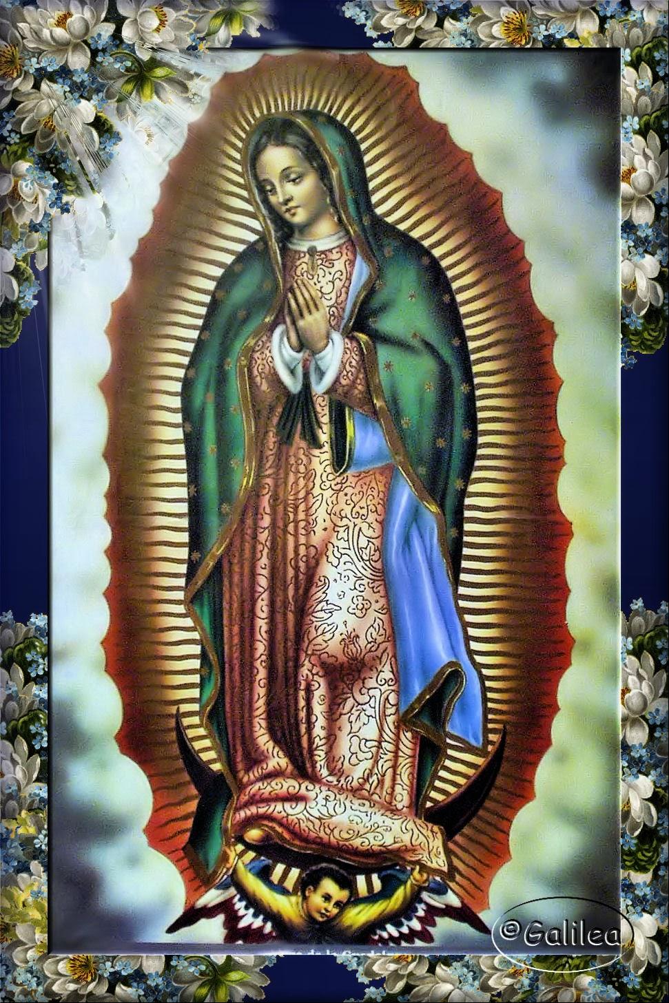 Virgen María, Ruega por Nosotros ®: DESCRIPCIÓN DE LA IMAGEN DE LA ...