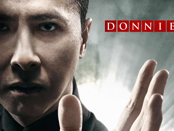 Best Movies of 2016: 'Ip Man 3', 'The Family Fang', 'The Girl on the Train' & more!