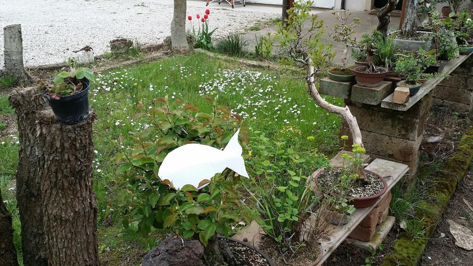 Giorgitudini poissons dans le jardin for Bricoler dans le jardin