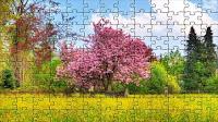 Cherry tree puzzle