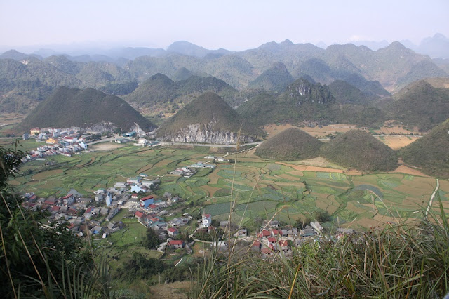 Which flowers in Ha Giang are grown as food and medicine? 2