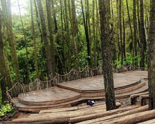www.Tinuku.com Open air theater in Mangunan pine forest constructed adjust sloping contours and without removing trees