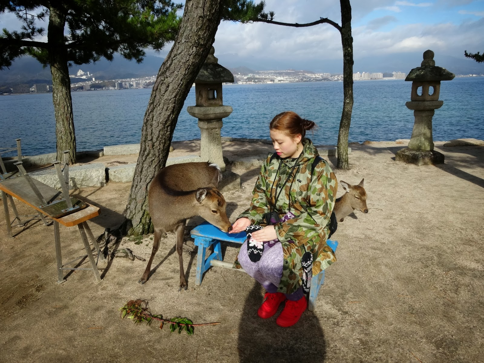 Miyajima island views near Hiroshima Japan, girl with two curious deer