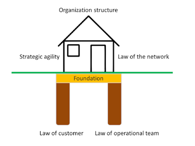 Viable systems in network of teams for business agility in a complex environment