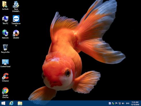 Bộ cài Windows 8.1 Pro with Update 3 (64-bit)