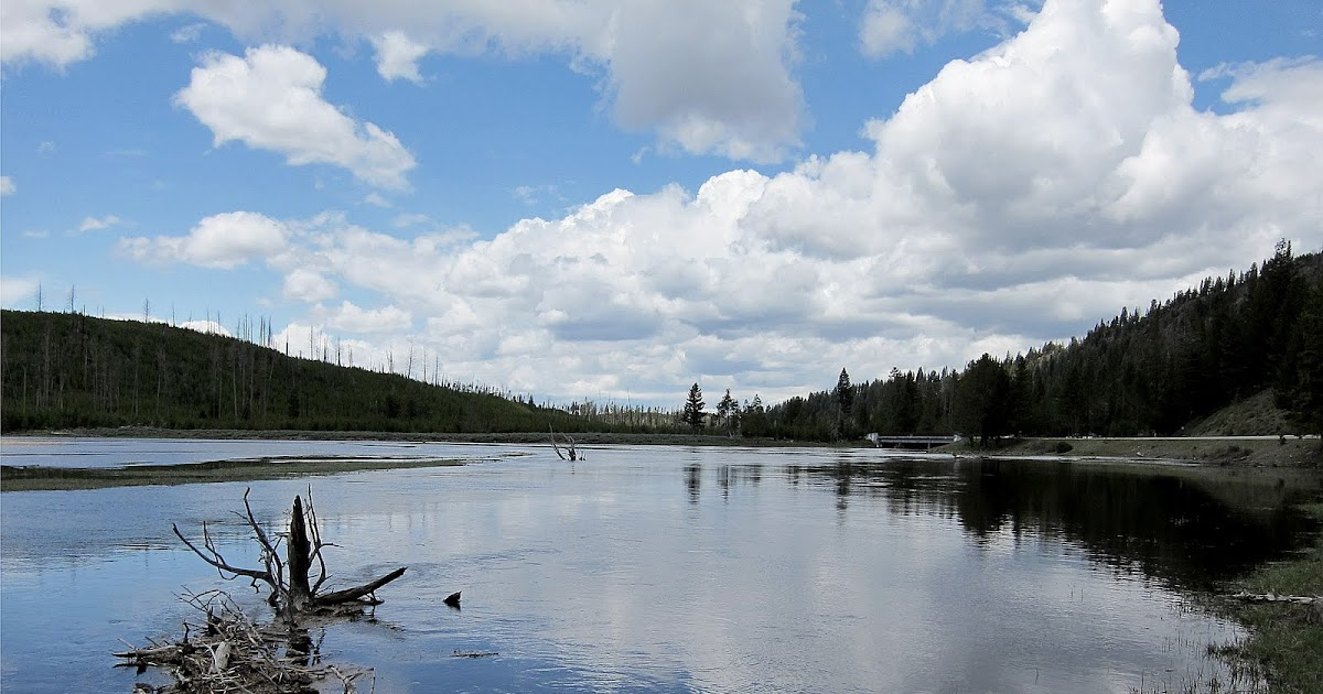 Fly Fishing In Yellowstone National Park: Lots Of Mud ...