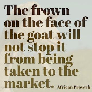 The frown on the face of the goat will not stop it from being taken to the market.