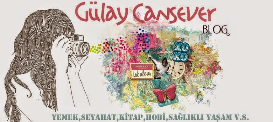 gulay cansever blog