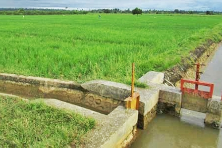 Irrigation Improvements Reduce Food Inequality