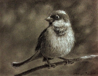 A charcoal and white pastel pencil sketch of a sparrow on canson paper by Manju Panchal