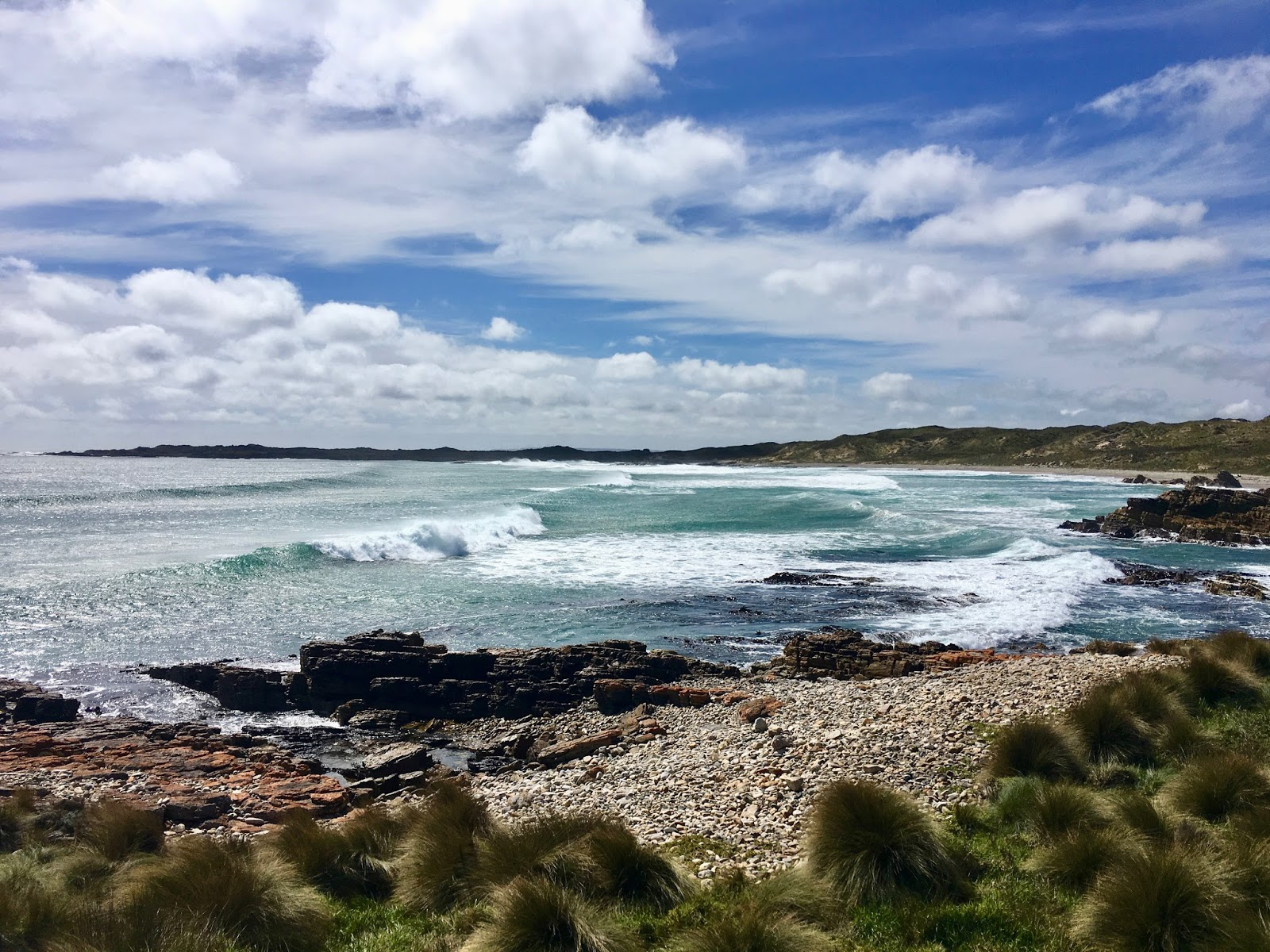 The Ravenous Duck: Camping on Tassie's west coast