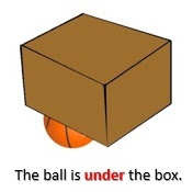 Under the box