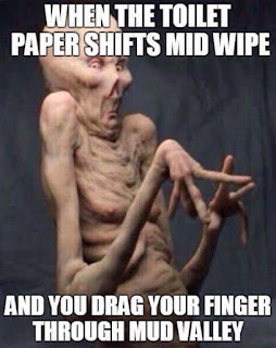 When the toilet paper shifts