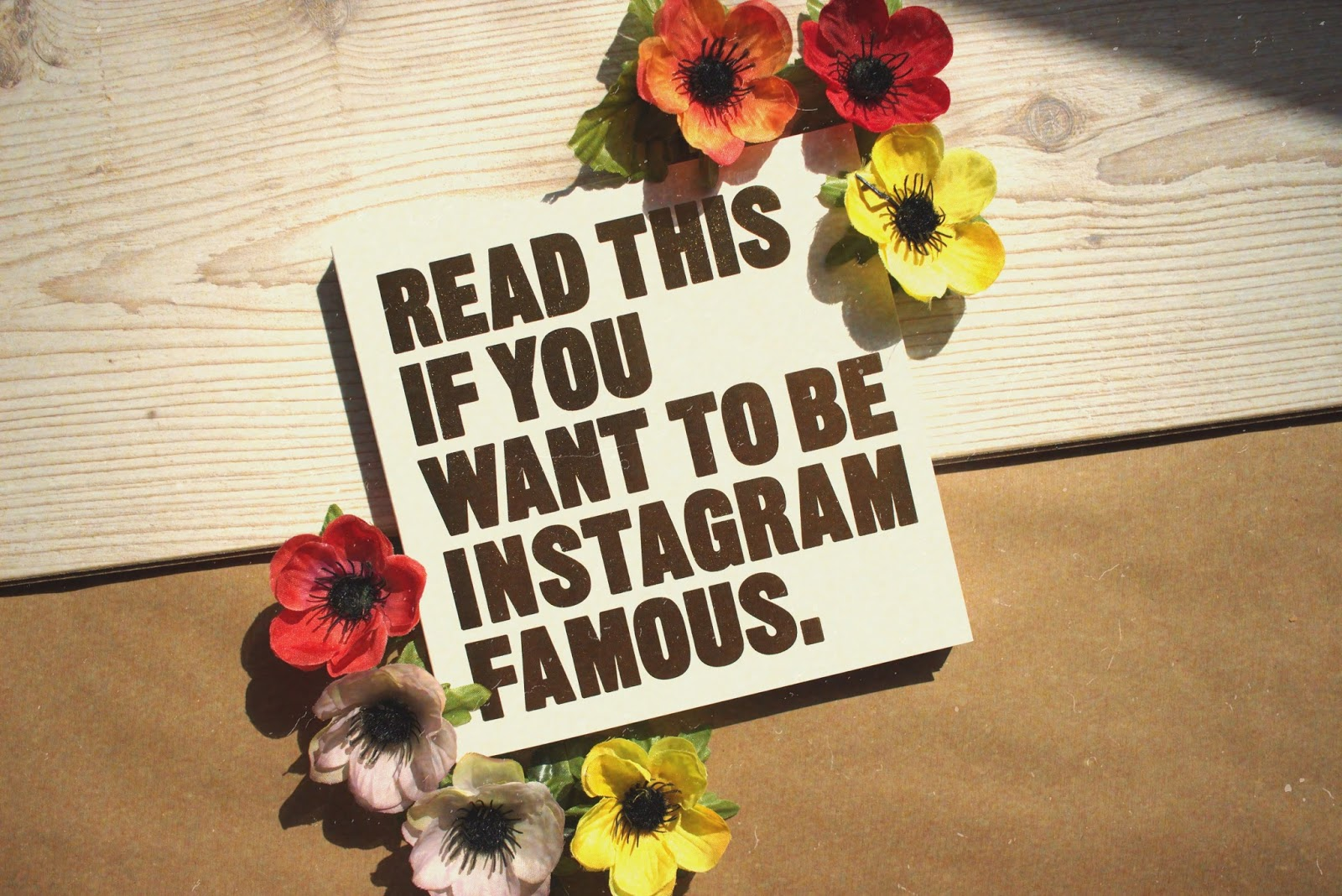 instagram tips, instagram help, grow your instagram, book review, instagram famous