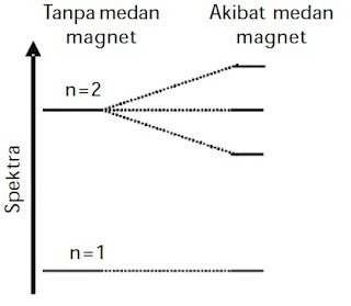 Spektrum atom hidrogen terurai dalam medan magnet (efek Zeeman).