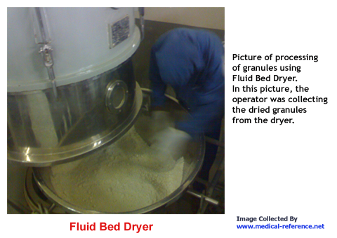 Picture of granules in fluid bed dryer
