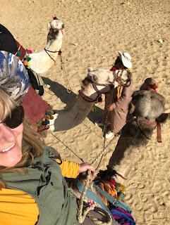 Egypt, Karfelt, Camel, Travel, Solo travel, Author, Writer