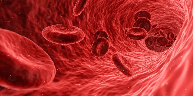 seven body tissues sapta dhatu