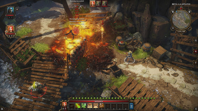 Divinity Original Sin Full Version
