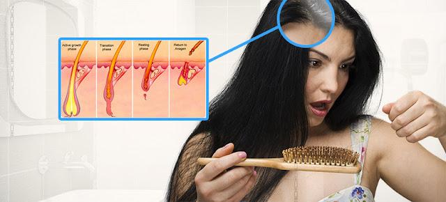 Begini Nih, Cara Atasi Rambut Rontok Dengan Daun Pandan, Yuk Buktikan Ladies