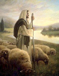Resultado de imagem para Mensagem: O cordeiro e a ovelha