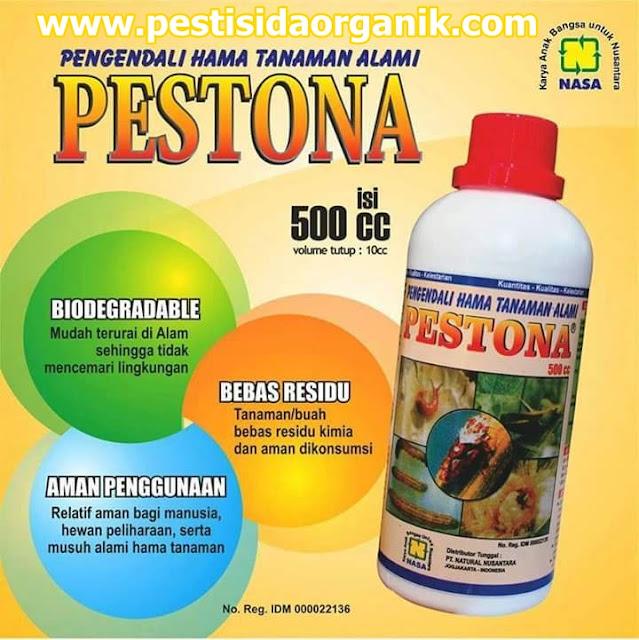 pestona pestisida nabati walang sangit penggerek batang belalang ulat keong mas