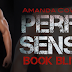 Book Blitz : Excerpt + Giveaway - Perfect Sense (Perfect Series #1) by Amanda Cowen
