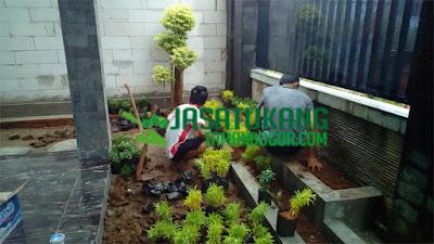 Tukang Taman di Cawang,Jasa Pembuatan Taman Rumah di Cawang,Jasa Tukang Taman di Cawang,Tukang Taman Murah dan Profesional di Cawang