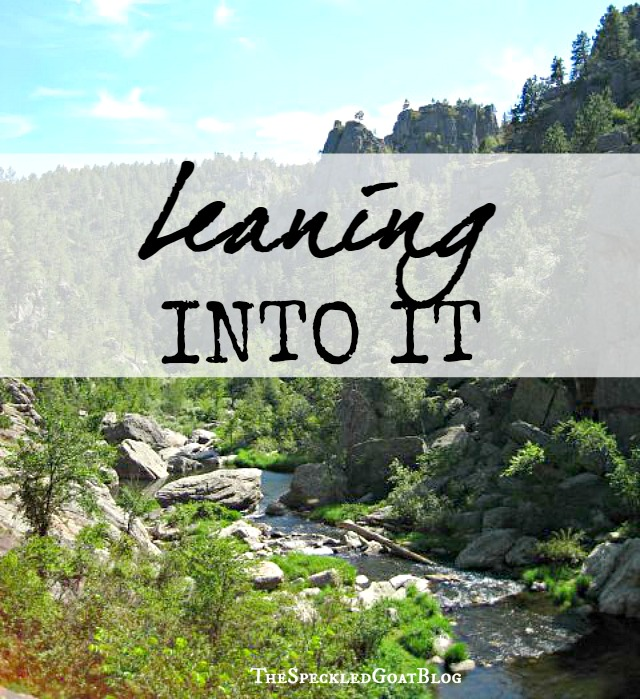Leaning Into It | Instead giving in to fear, hiding your talents, shrugging off your hurts, not taking yourself seriously... maybe it's time to lean into it.