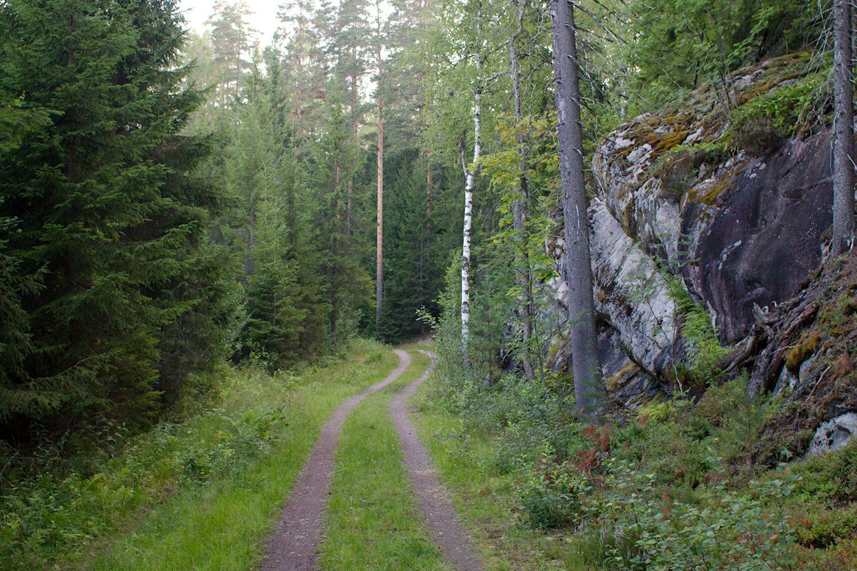 Latupohjaa Pirttimäen ja Luukin välillä, Reitti 2000