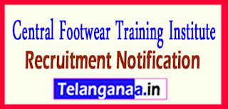 CFTI Central Footwear Training Institute Recruitment Notification 2017