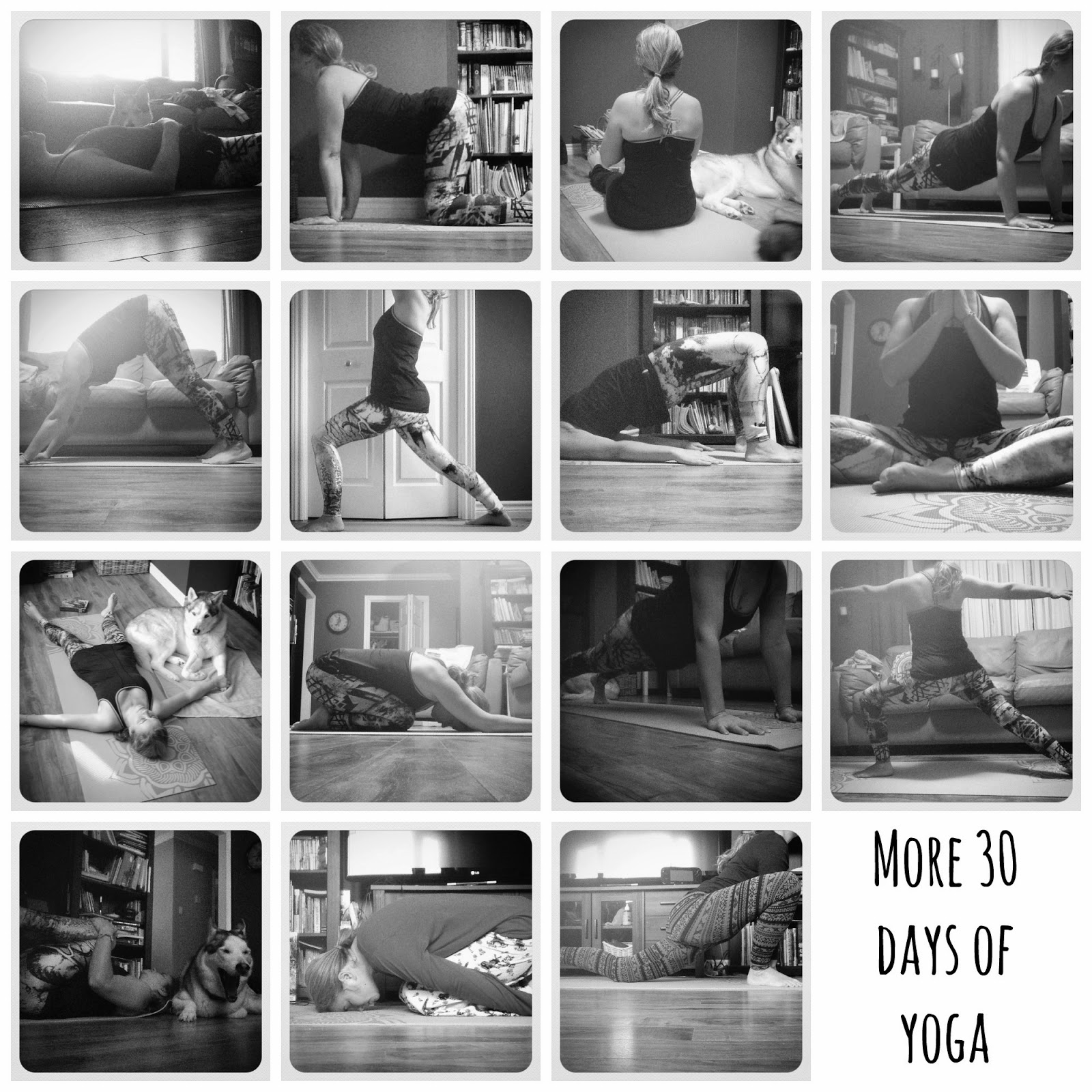 Yoga Every Day With Yoga With Adriene And More
