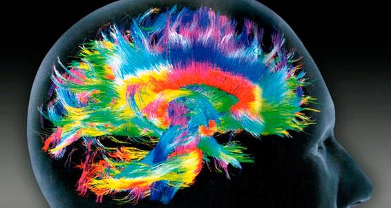 Exames ressonância já conseguem identificar as áreas ativas do cérebro Foto: Reprodução