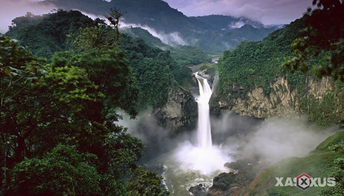 10 Manfaat Keanekaragaman Hayati Bagi Kehidupan Manusia di Indonesia