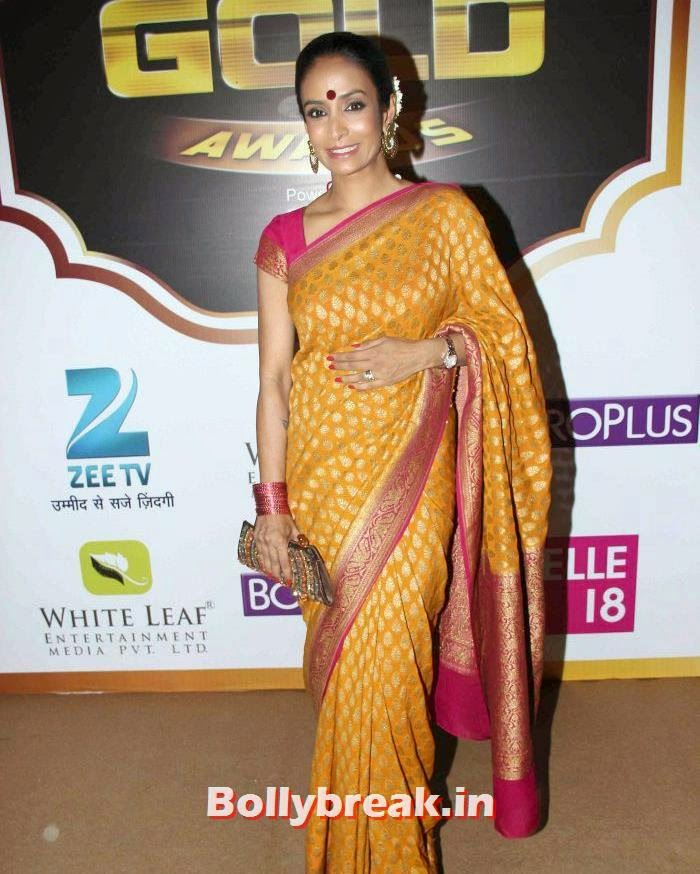 Suchitra Pillai, Popular Tv Actresses on The Red Carpet of 7th Boroplus Gold Awards