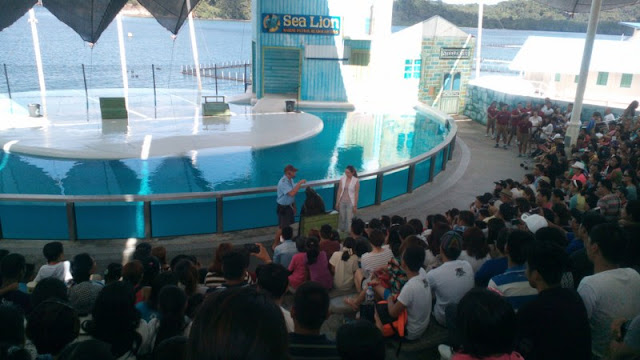 Ocean Adventure Sea Lion Show