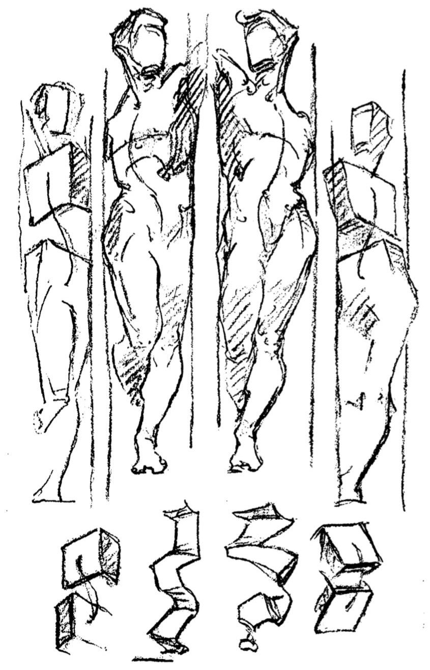 Anatomy: George Bridgman   Drawing Seeing
