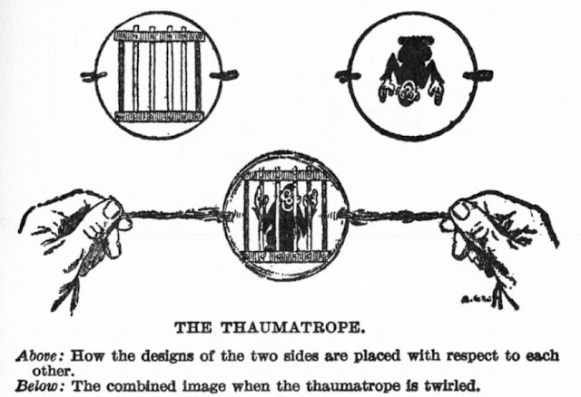 ¿Qué es el Efecto Estroboscópico? | Aplicaciones + Peligros | Taumatropo + Fenaquistiscopio + Zoótropo + Praxinoscopio + Zoopraxiscopio