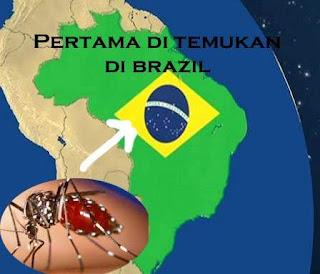 Penyebab Dan Cara Mudah Mengatasi Virus Zika